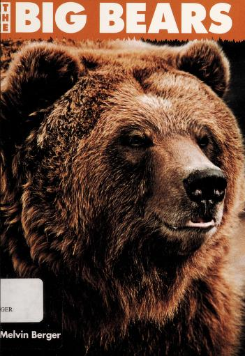 The Big Bears by Melvin Berger
